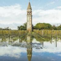 Moeche, vini rari e trattorie: ecco i sapori della Laguna di Venezia
