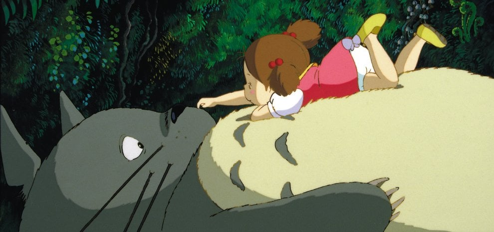 'Totoro', quella buffa creatura del maestro Miyazaki diventata un'icona