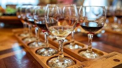 """""""Ehi, ci siamo anche noi!"""": la carica dei vini naturali nei giorni di Vinitaly"""