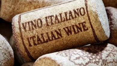"""Il vino italiano del futuro guarda a Est, ed è sempre più """"premium"""" e sostenibile"""