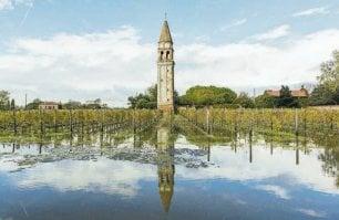 Moeche, vini rari e trattorie: ecco i sapori antichi  della Laguna di Venezia