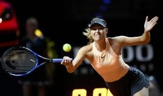 Tennis, Budapest: Seppi vince il derby con Fabbiano. Sharapova out a Stoccarda