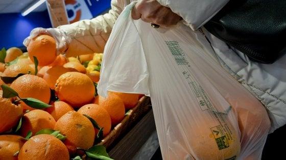 Sachetti bio, il Ministero della Salute: si possono portare da casa purché monouso, per alimenti e compostabili