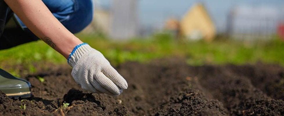 Trenta comuni italiani aderiscono alla rete europea contro il pesticidi