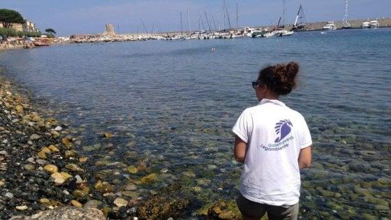 """L'appello di Legambiente all'Elba: """"Fate come le Tremiti, dite addio alla plastica usa e getta"""""""