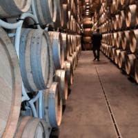 Il mito del Sassicaia compie 50 anni: così ha cambiato la storia del vino italiano