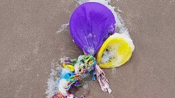 """""""Basta palloncini in volo, inquinano i mari"""", la lotta alla plastica anche nei cieli"""