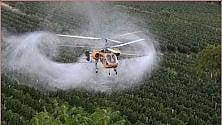 Pesticidi, per fermarli migliaia di persone in marcia nel Veneto