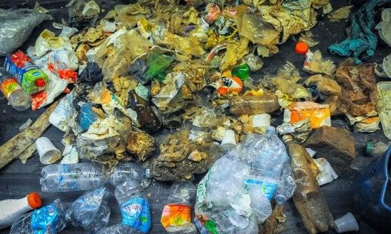 """""""Guardate quanta plastica finisce nelle nostre reti"""""""