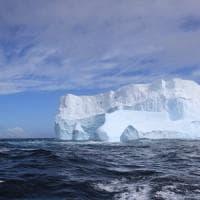 Un iceberg per risolvere l'emergenza idrica di Città del Capo