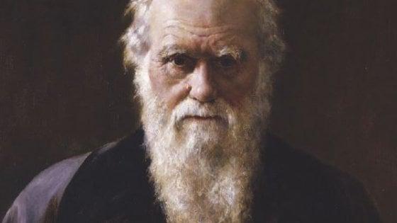 """""""Darwin me fa specie"""", quando la scienza parla romanesco"""