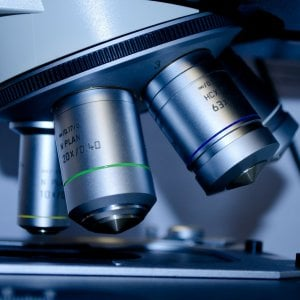 Sclerosi tuberosa, la giornata mondiale per conoscere questa malattia rara
