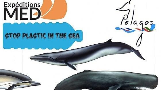 Legambiente lancia campagna contro plastica in mare