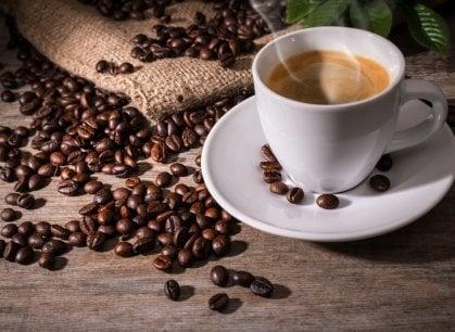 Amanti del caffè di tutta Italia unitevi: a Milano c'è il festival che fa per voi