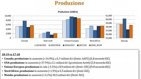 Grano duro, cresce la produzione globale. Ma Europa e Italia arrancano