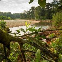 Aree protette: nel mondo a rischio un terzo dei tesori ''naturali''