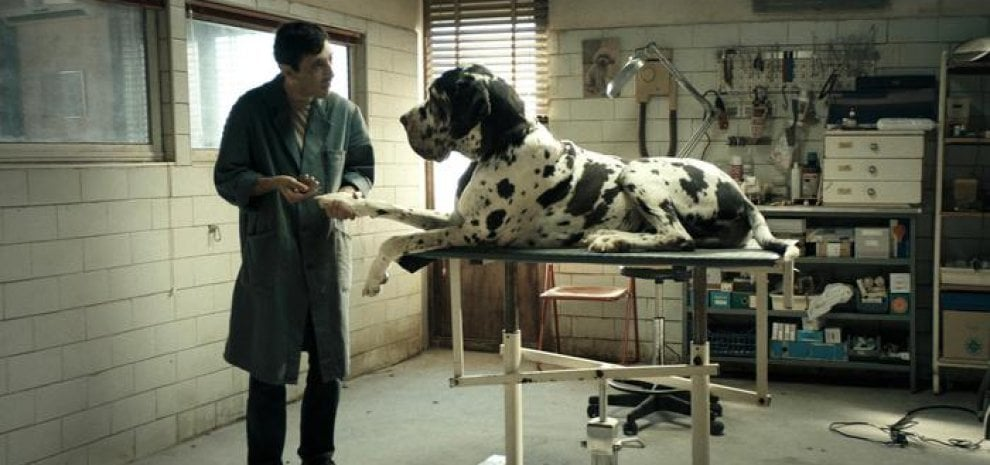 Palm Dog, tra cinofilia e cinefilia: 'cappotto' per l'intero cast canino di 'Dogman'
