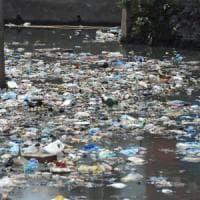 Plastica: tutto quello che sappiamo sull'inquinamento