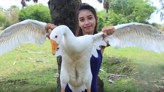 Facevano i 'survivalist' mangiando animali protetti: fermati gli youtuber cambogiani da milioni di clic