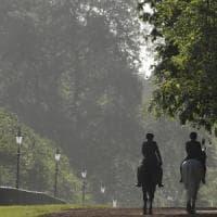 Giovane accoltellato a morte a Londra