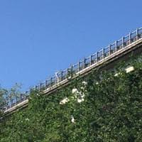 Francavilla al Mare, uomo lancia figlia dal viadotto della A14 e minaccia di suicidarsi