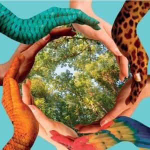 """FAO,  """"La  biodiversità si salva difendendo comunità locali e agricoltori"""""""