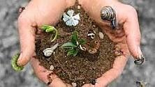 """""""La  biodiversità  si salva difendendo  le comunità locali  e gli agricoltori"""""""