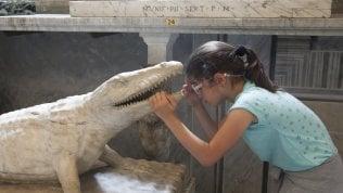 """""""Scopri gli occhi del coccodrillo""""Tra tatto e olfatto ai Vaticanila visita dei bimbi ipovedenti"""