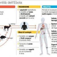 Ebola, parte la vaccinazione. Il Congo confida nei farmaci sperimentali