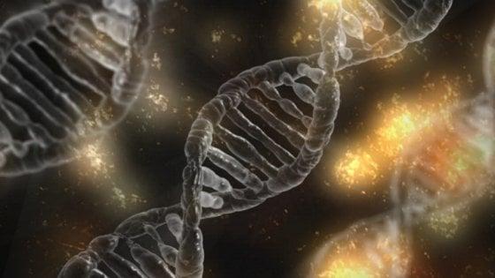 La fotografia delle mutazioni del tumore renderà l'immunoterapia ancora più precisa