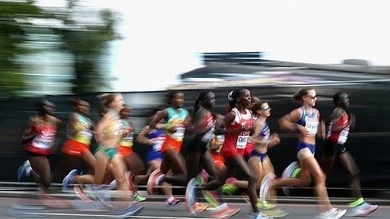 Dai carboidrati alle proteine: come allenare le riserve corporee per la mezza maratona