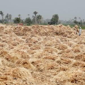 Fondi Ue, sull'agricoltura a rischio 2,7 miliardi