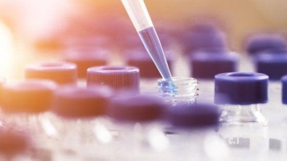 Tumore del fegato, una nuova terapia mirata per i pazienti già trattati