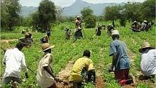Angola: 1 miliardo di euro  è l'impegno economico della Francia
