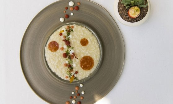 La cucina di Andrea Mattei dove i piatti non assomigliano a nulla di già assaggiato