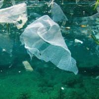 Giornata mondiale dell'ambiente: combattere la plastica, una sfida globale