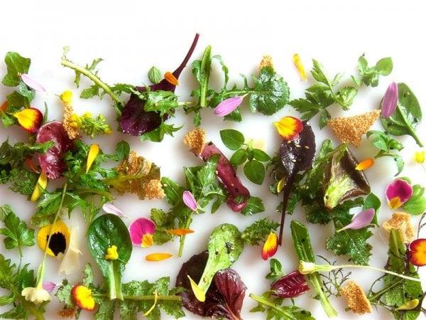 Si fa presto a dire insalata: quando le verdure crude sono un capolavoro da chef