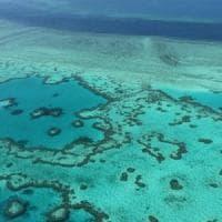 La Grande barriera corallina ha rischiato di scomparire per 5 volte negli ultimi 30.000...