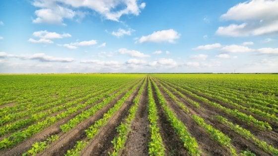 Acqua e cambiamento climatico, le sfide per l'agricoltura europea
