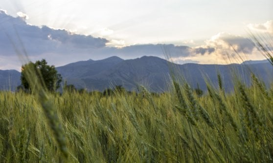 Sugli antichi sentieri della transumanza, per scoprire i sapori d'Abruzzo