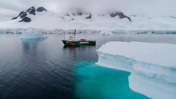 Greenpeace: plastica e Pfas nei ghiacci dell'Antartide