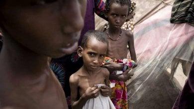 Conflitti e clima avverso: si allunga l'elenco  dei Paesi assistiti per mancanza di cibo