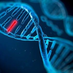 Il gene che può fermare il tumore