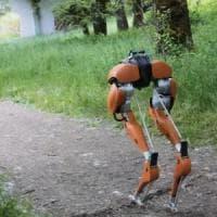 Cassie, il fattorino robot che cammina come uno struzzo