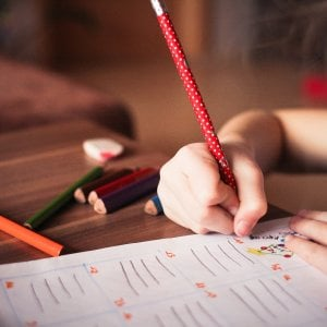 """I bambini scrivono alla Crusca: """"Mettete nei dizionari il pulmanista che ci accompagna a scuola"""""""