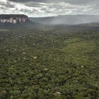 Colombia. Scienziati e Unesco per le montagne che la guerra civile ha nascosto al mondo