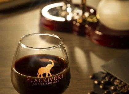 Il caffè più caro al mondo? Si fa con i chicchi raccolti negli escrementi di elefante