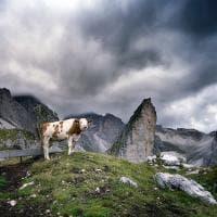 Dolomiti, il cuore di pietra del mondo: la mostra al Palazzo delle esposizioni