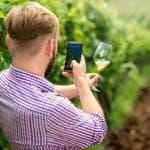 Il vino brinda con i social network