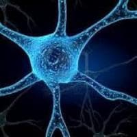 Sclerosi multipla: avanti con le staminali